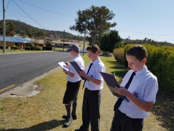 Surveying the streets of Stanthorpe